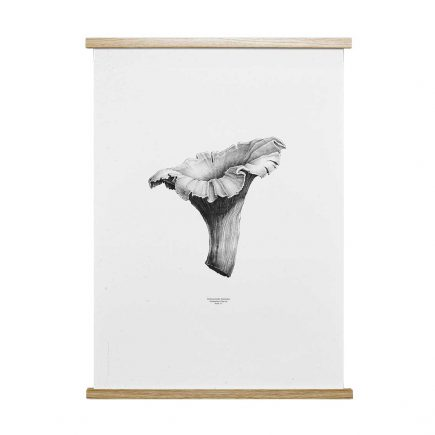 Nature 1:1 Cantharel poster ontworpen door From Us With Love voor Paper Collective
