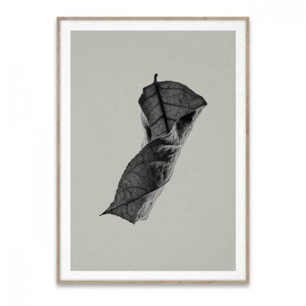 Sabi Leaf 04 van paper collective