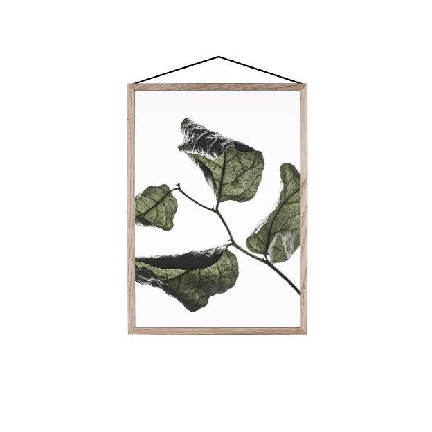 Moebe Floating Leaves 03 A4