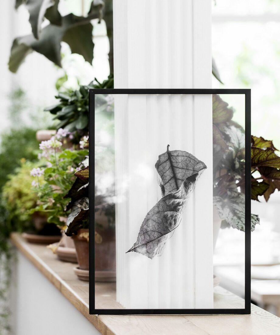 Moebe Frame A3 zwart met Floating leaves