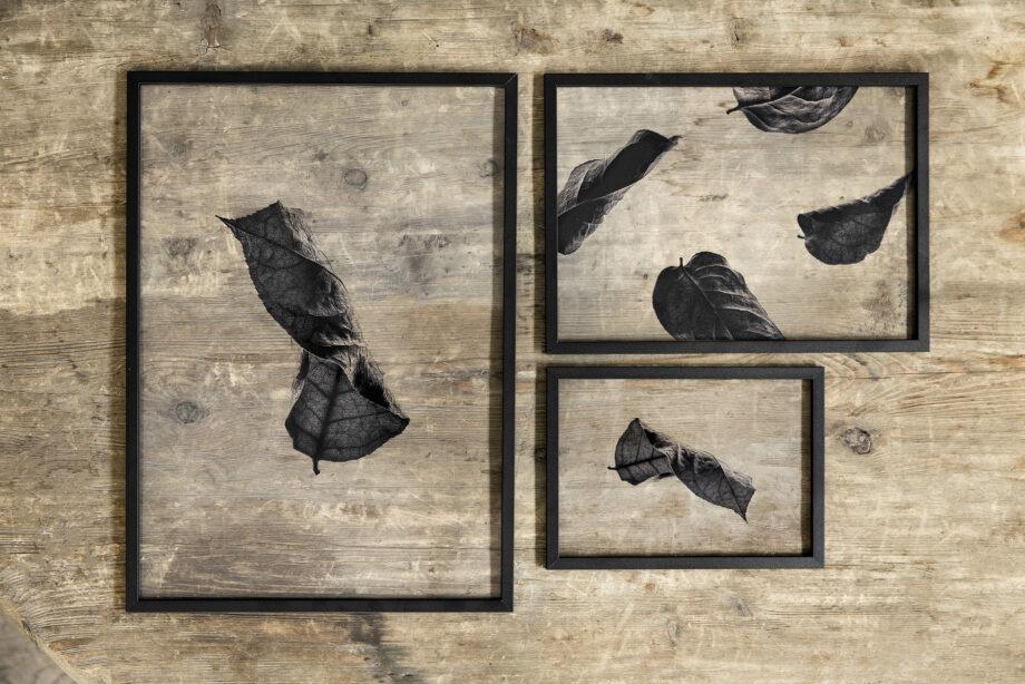 Moebe Frame A5 A4 A3 zwart met Floating leaves