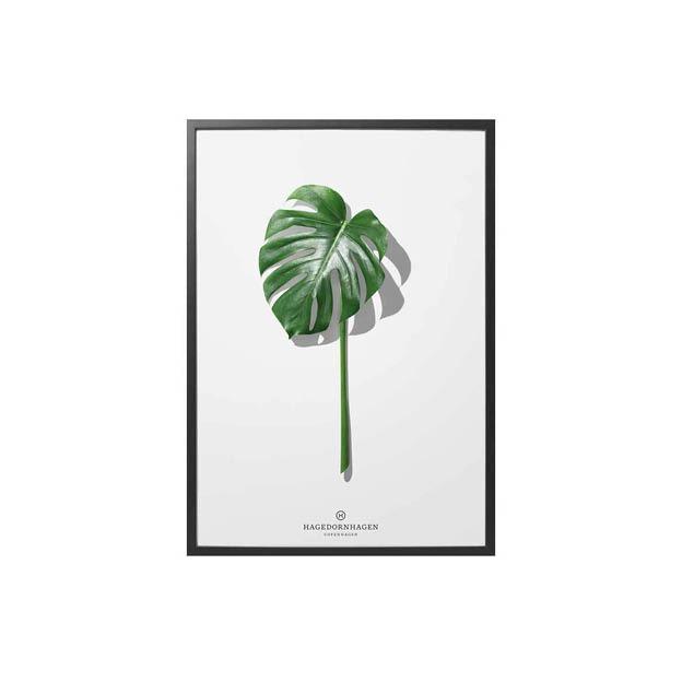 hagedornhagen-poster-folium-f5-30x40